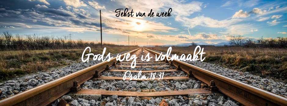 Bijbeltekst – week 8